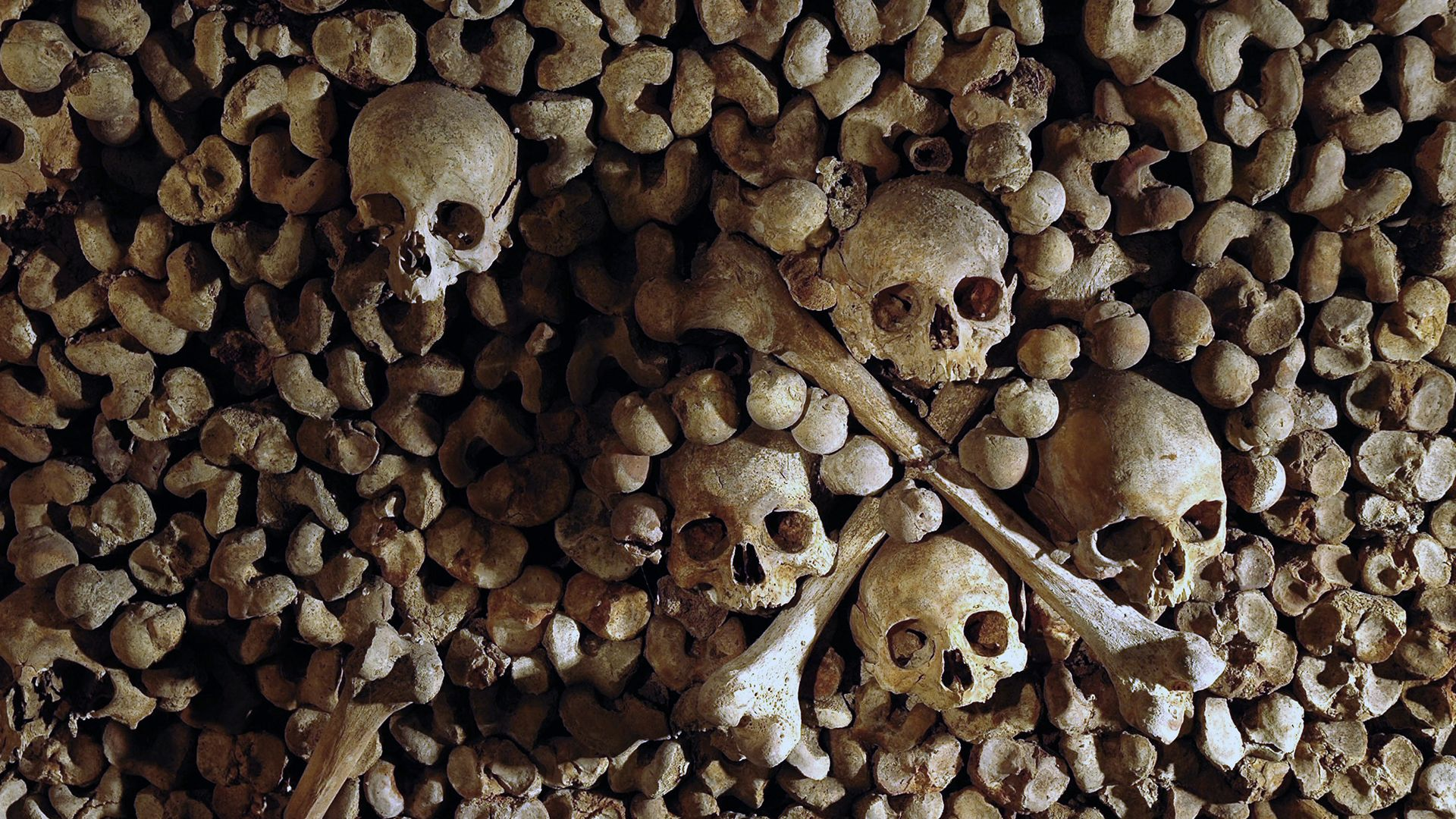 Individual rates | Catacombes de Paris